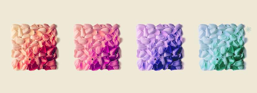 5 Perpaduan Warna Yang Menawan Untuk Dekorasi Pernikahan